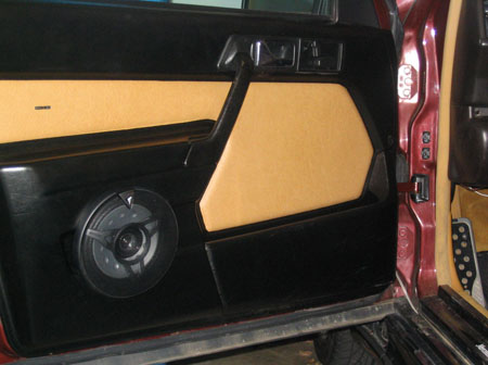 Custom door panels with 6.5