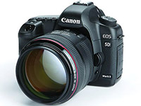 Canon EOS 5D Mark II with EF 85mm f/1.2 lens