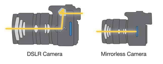 Without the mirror assembly of a DSLR, a mirrorless camera can be smaller and lighter.