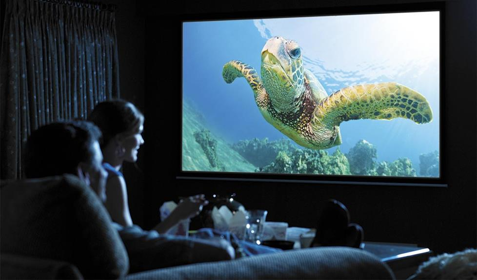 Movie Night With A Projector
