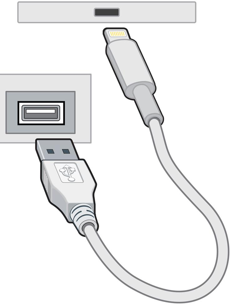Lightning-to-USB cable