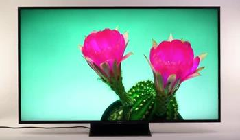 Video: Sony Z9D 4K Ultra HD TVs