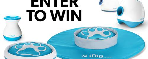 Win iFetch gear for your pup