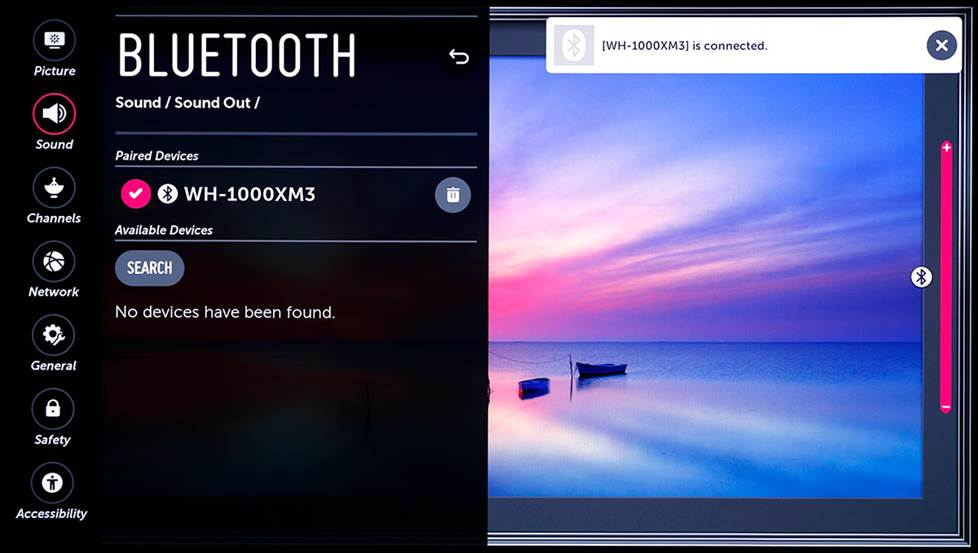 Screenshot of TV bluetooth menu