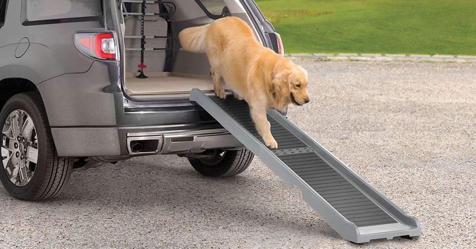 A dog walking down a WeatherTech foldable PetRamp to get out of a large SUV