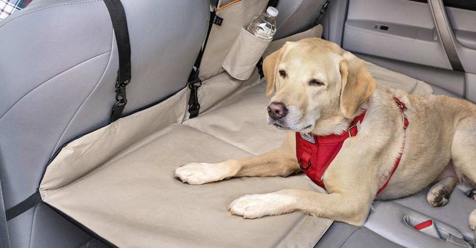 The Backseat Bridge bridges the gap between your front and back seats, giving your dog room to spread out