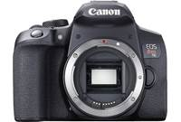 Canon EOS Rebel T8i (no lens included)