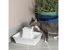 Automatic Pet Feeders & Water Fountains