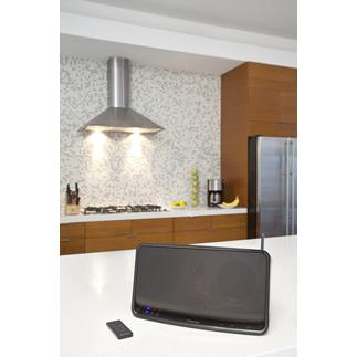 Pioneer A1 Wi-Fi speaker with AirPlay