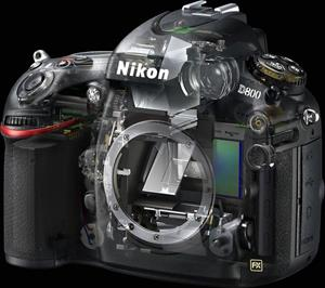 The Nikon D800, semi-transparent view
