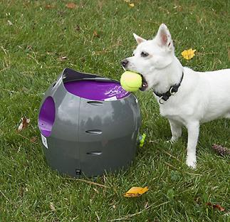 Teach your dog to reload the PetSafe Automatic Ball Launcher himself, so your arm won't get too tired.