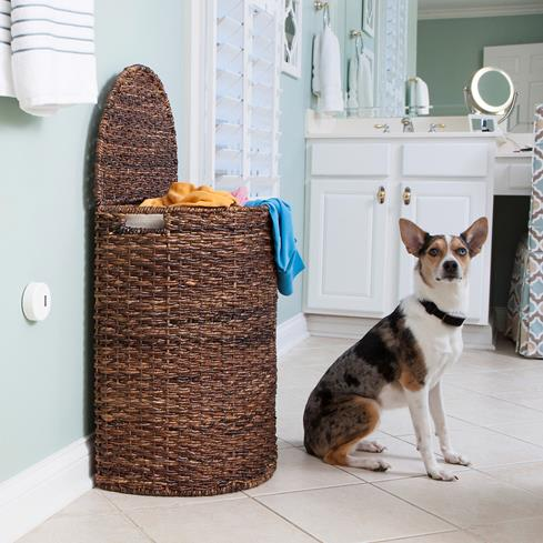 The Pawz Away Mini Pet Barrier makes sure that hamper will still be upright when you get home.