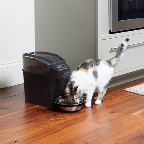 The PetSafe Healthy Pet Simply FeedT feeder helps with portion control and keeps mealtimes regular.