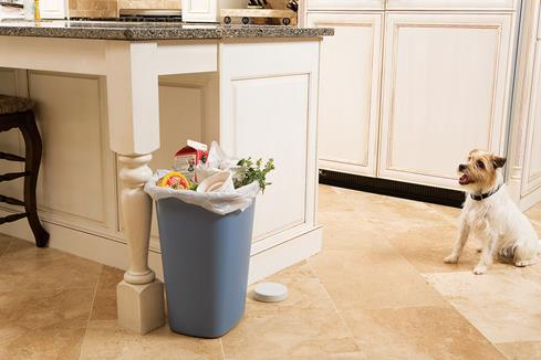 The Pawz Away Indoor Pet Barrier makes sure even this overflowing trash can will still be upright when you get home.