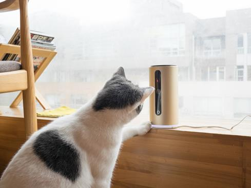 The PETKIT MATE lets you look in on your pets, talk to them, and entertain them with a remote-controlled laser game