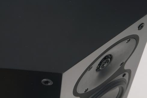 Revel Performa3 S206 tweeter close-up