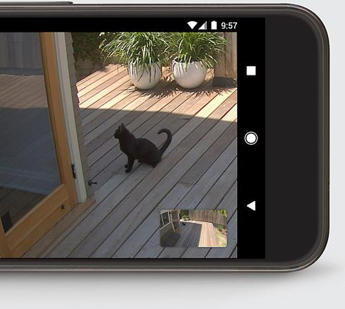 The Nest Cam IQ Outdoor camera lets you check in at home via a free app on your smartphone.