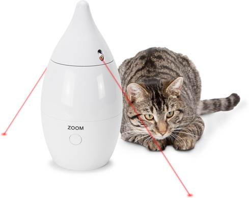 Cat plays with PetSafe Zoom Rotating Laser Cat Toy