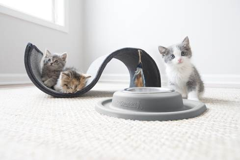 WeatherTech Single Low Pet Feeding System with kittens!