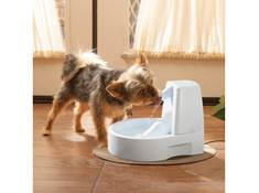 make mealtimes easier for you and your furry friends