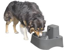 <span class='specials-prod-title'>PetSafe Drinkwell® 2 Gallon Pet Fountain</span><span class='specials-prod-subtitle'>Fresh water fountain for large dogs or multiple pets</span>