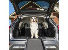 PetSafe® Happy Ride™ Folding Dog Ramp