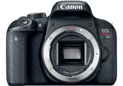 Canon EOS Rebel T7i (no lens included)