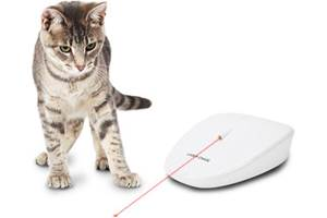 PetSafe Laser Chase Cat Toy