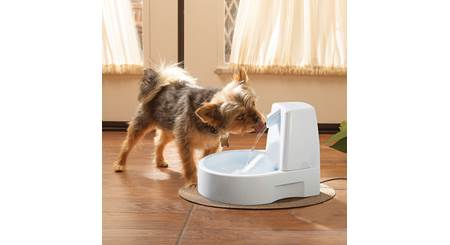 PetSafe Drinkwell® Original Pet Fountain