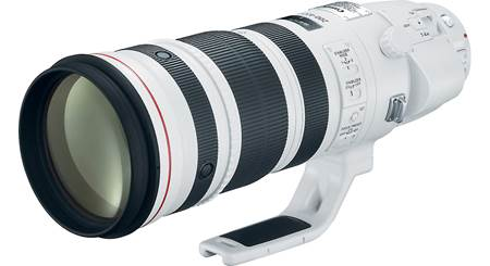 Canon EF 200-400mm f/4L IS USM Lens