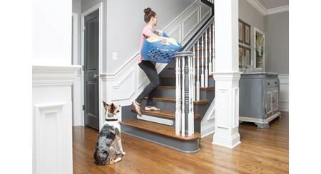 PetSafe Pawz Away® Threshold Barrier