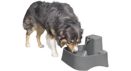 PetSafe Drinkwell® 2 Gallon Pet Fountain