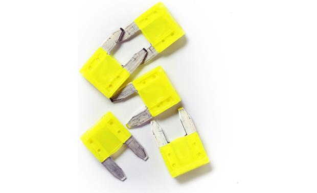 Littelfuse Mini® Blade-style Fuses Front