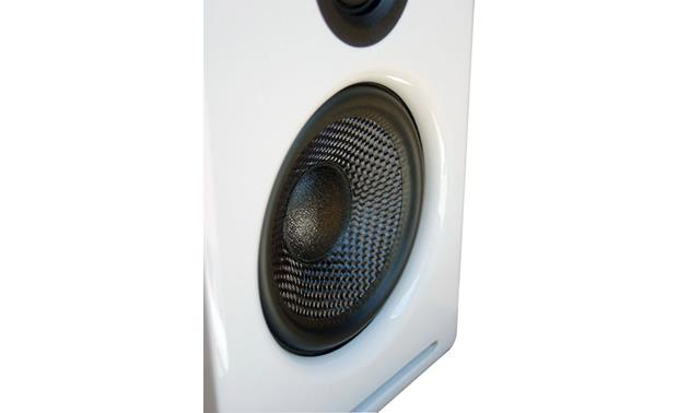 Audioengine A2 Kevlar woofer