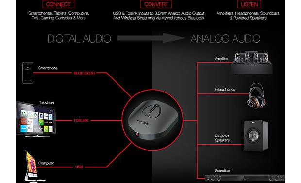 AudioQuest Beetle Connectivity options
