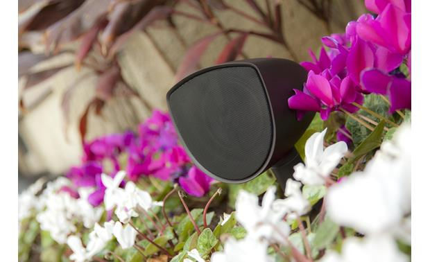 Acoustic Landscape™ AS4 Hide them in the garden, so they're heard and not seen