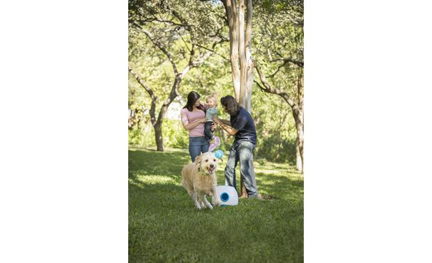 iFetch Too iFetch keeps your pet active so everyone enjoys family time