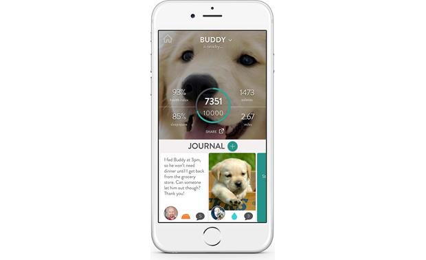 FitBark Activity Monitor Make sure all of your pet's caretakers are on the same page