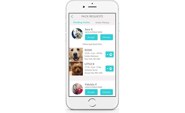 FitBark Activity Monitor Make new friends
