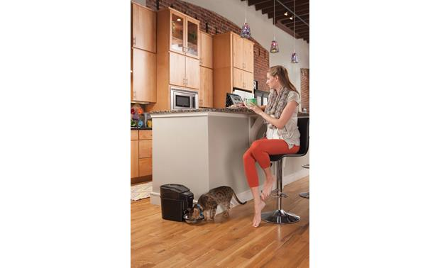 PetSafe Healthy Pet Simply Feed™ Mealtime comes on schedule, even when you're busy