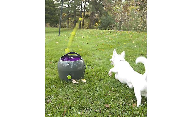 PetSafe Automatic Ball Launcher Other