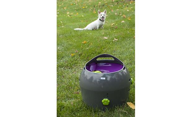 PetSafe Automatic Ball Launcher Fire balls 8-30 feet