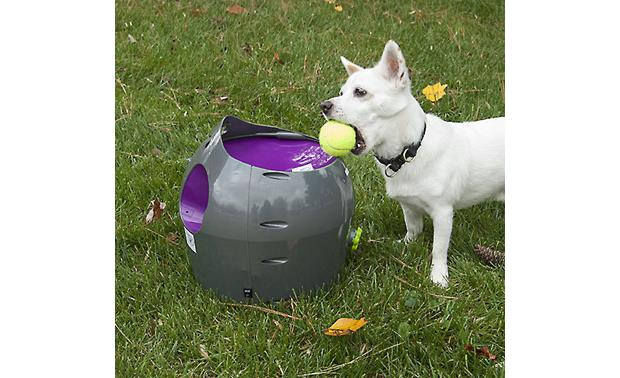 PetSafe Automatic Ball Launcher Teach your dog to reload and keep the game going