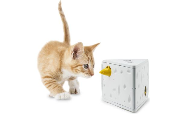PetSafe Cheese Cat Toy Great for kitties of all ages