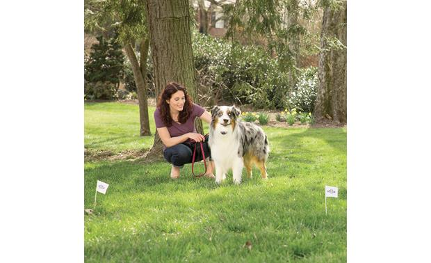 PetSafe Free to Roam Wireless Fence™ Create a wire-free containment zone up to 1/2 acre in diameter