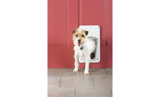 PetSafe Small Electronic SmartDoor™ Front