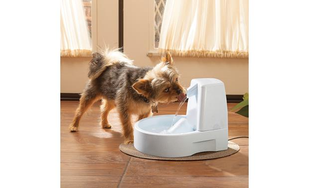 PetSafe Drinkwell® Original Pet Fountain Front