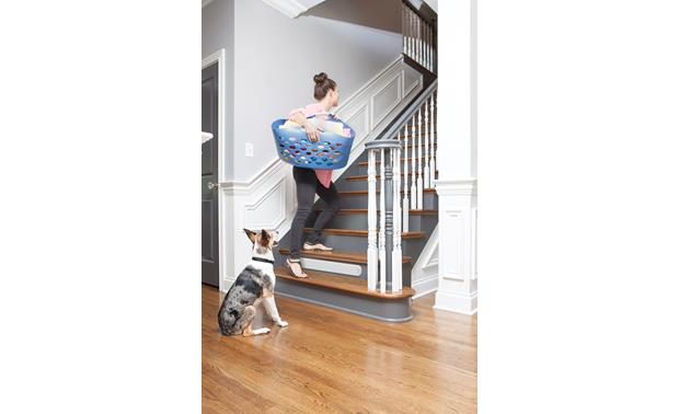 PetSafe Pawz Away® Threshold Barrier Other
