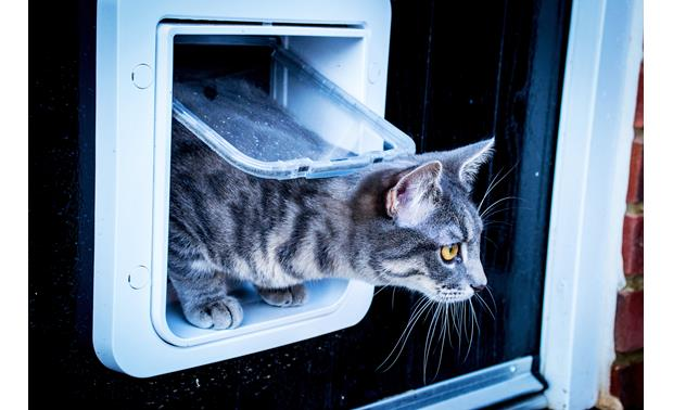 SureFlap Microchip Pet Door Give your feline friend the freedom to explore