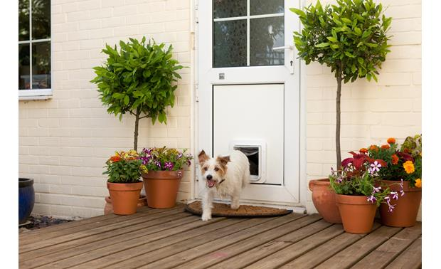 SureFlap Microchip Pet Door Plants flanking the door help your pet feel safer when exiting